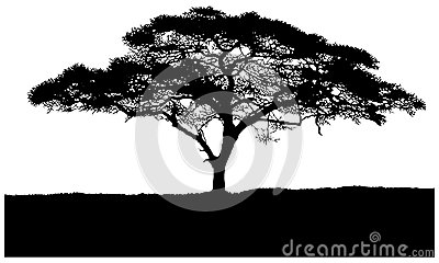 Silhouette Of The Tree African Savannah Stock Illustration
