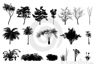 Silhouette Tree Plants and Flowers