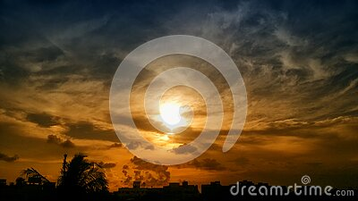 Silhouette Of Trees And Buildings During Golden Hour Free Public Domain Cc0 Image