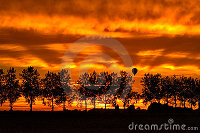Silhouette with trees and an hotair balloon