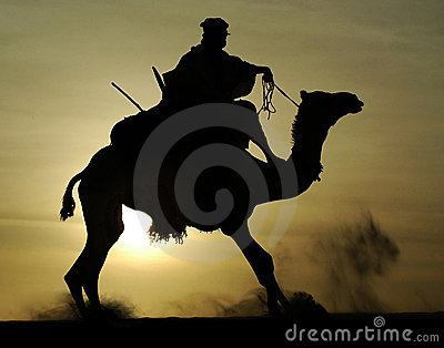 Silhouette of Tuareg rider and camel rising
