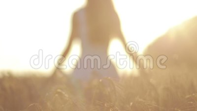 Silhouette of woman in wheat field in sunset light stock footage