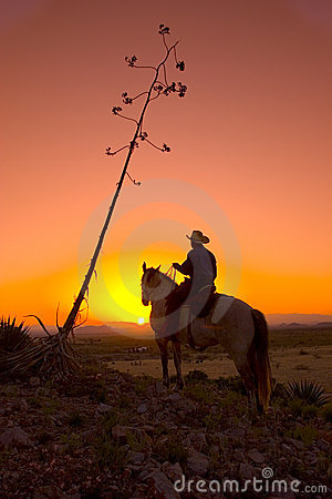 Free Silhouetted Cowboy Stock Photography - 9067802