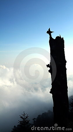 Silhouetted stump on mountain