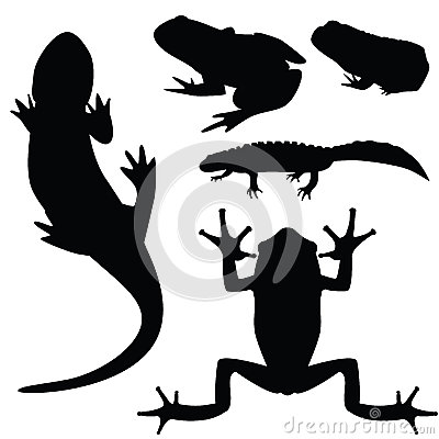 Silhouettes of amphibians,