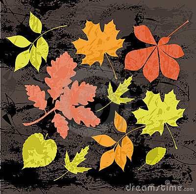 Silhouettes of autumn leaves.