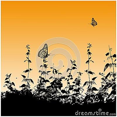 Silhouettes, butterflies