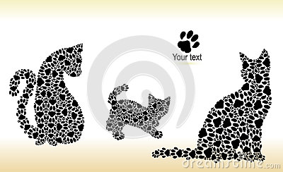 Silhouettes of cats from cat tracks Stock Photo