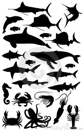 Silhouettes of marine life