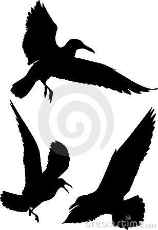 Free Silhouettes Of Birds Royalty Free Stock Images - 4584299