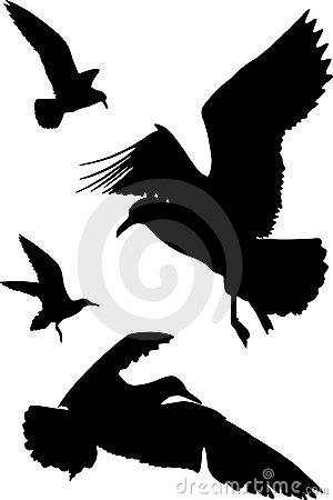 Free Silhouettes Of Birds Royalty Free Stock Image - 4641336