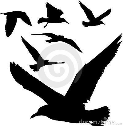 Free Silhouettes Of Birds Royalty Free Stock Photography - 4698807