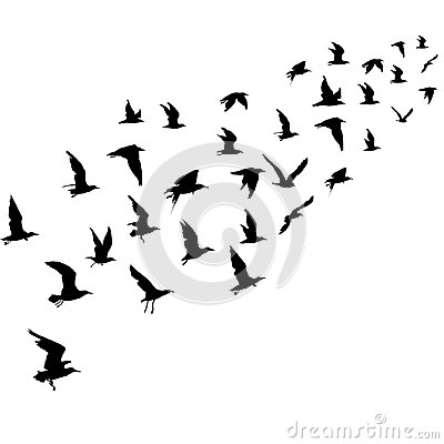 Free Silhouettes Of Flying Birds Stock Photography - 104745882