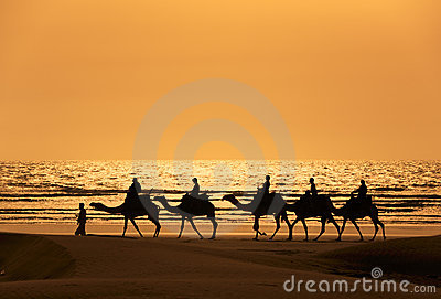 A silhoutte of a dromedary and Tourists