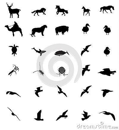 Silhouttes dell animale della fauna selvatica