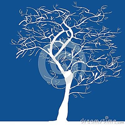 Silhueta da árvore