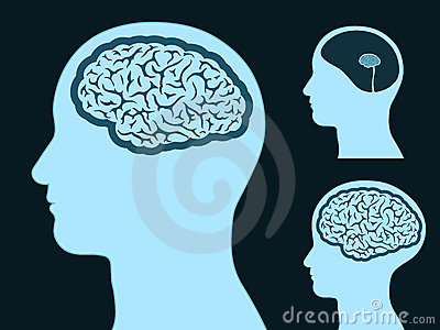 Silhueta principal masculina com o cérebro pequeno e grande