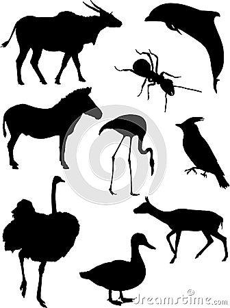 Silhuetas dos animais do vetor