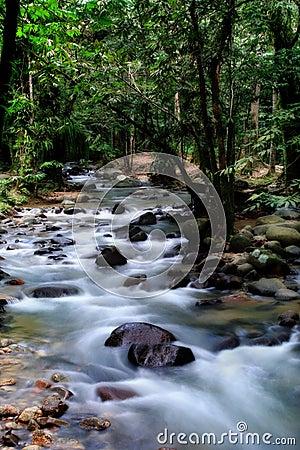 Silky creek - Long exposure
