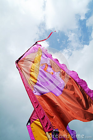 Silky flags Editorial Photo