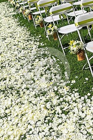 Silla de la boda