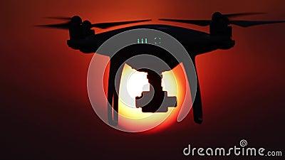 Silueta del abejón, puesta del sol anaranjada, 50 fps, cuatro escenas video metrajes