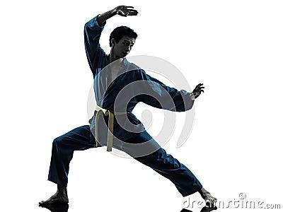 Silueta del hombre de los artes marciales del vietvodao del karate