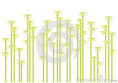 Siluetas de bambú del árbol,