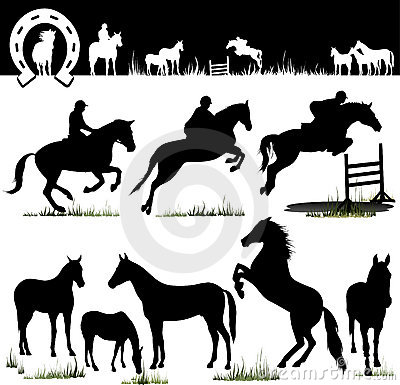 Siluetas del caballo del vector
