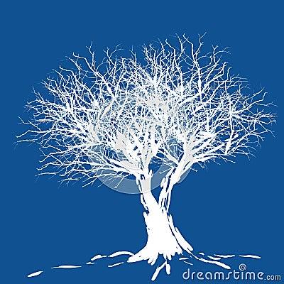 Siluetta dell albero