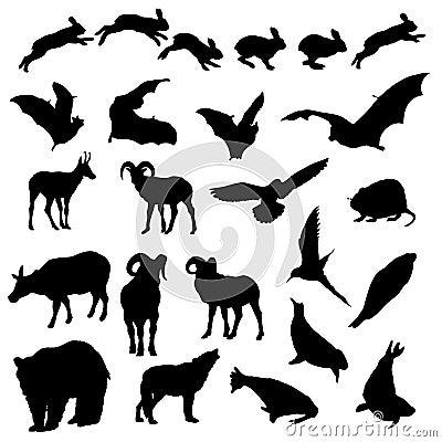 Siluette degli animali selvatici isolate vettore della fauna selvatica
