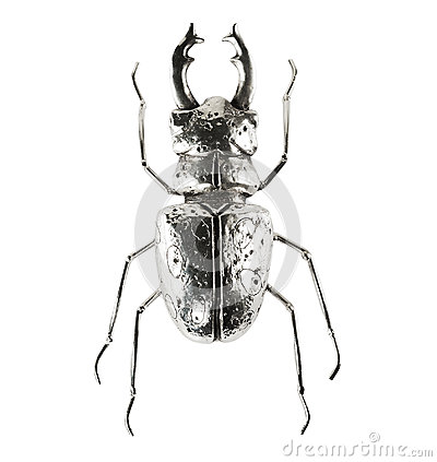 Free Silver Bug Figure Royalty Free Stock Image - 97174706