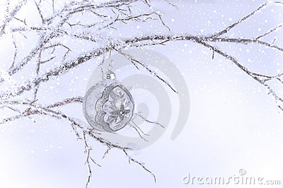 Silver & Clear Christmas Ornament on Branch Stock Photo