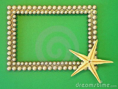 Silver frame and fish star