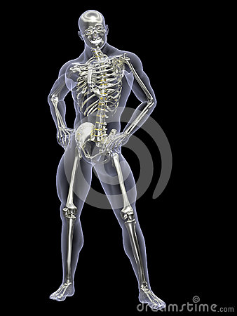 Silver and Gold Skeleton X-Ray