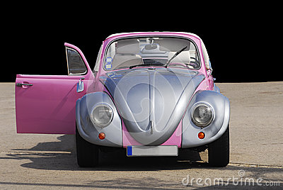 Silver Plated and Pink Beetle