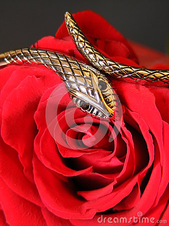 Silver snake and rose