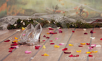 Silver womans shoes with roses petals