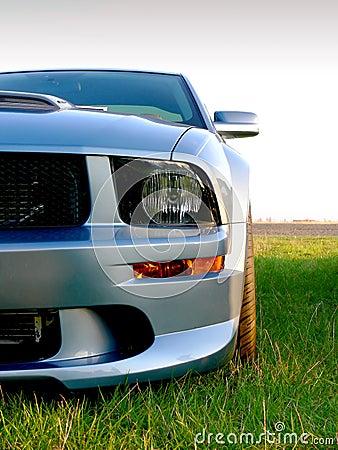 Silvergrey American Sportscar