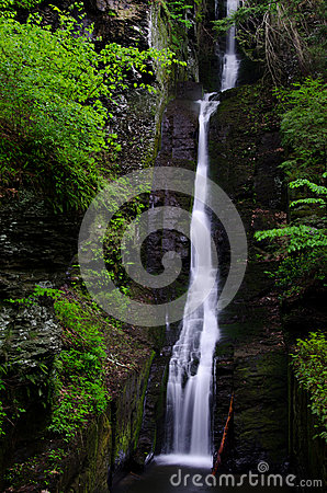 Free Silverthread Falls Royalty Free Stock Photo - 36323525