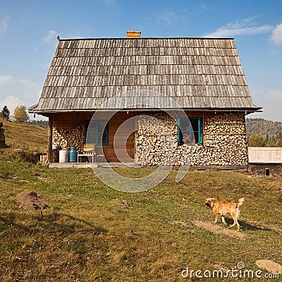 Simple rural house