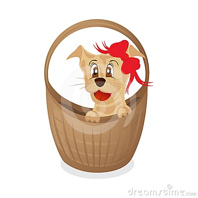 Simpotichny puppy in a basket