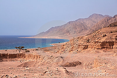 Sinai coast. Red Sea.