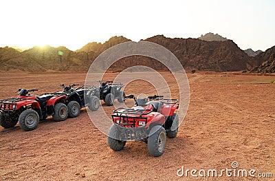 Sinai quad trip