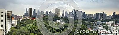Singapore City Skyline with Green Landscape