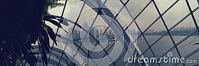 Singapore skyline through dome