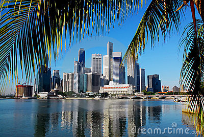 Singapore skyline and palmleafs