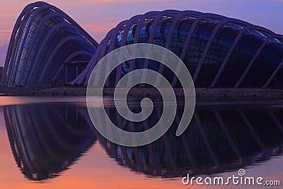 Singapore Sunrise at the New Botanical Garden