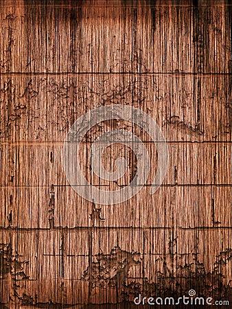 Singed Rotting Wood