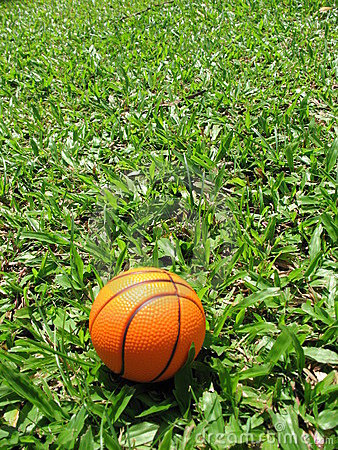 Single Basketball On The Grass